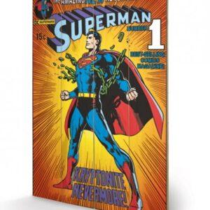 Posters Obraz na dřevě - DC COMICS - superman / krypt.