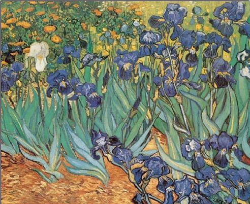 Posters Reprodukce Vincent van Gogh - Kosatce
