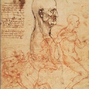 Posters Reprodukce Leonardo Da Vinci - Profil muže a studie dvou jezdců