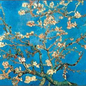 Posters Reprodukce Vincent van Gogh - Mandlovník - Květoucí větve mandlovníku