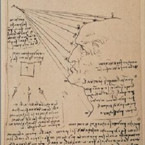 Posters Reprodukce Leonardo Da Vinci - Studie lidské tváře