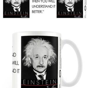 Posters Hrnek Albert Einstein - Nature - Posters
