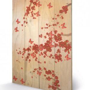 Posters Obraz na dřevě - Lily Greenwood - Butterflies & Blossoms