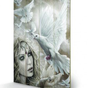 Posters Obraz na dřevě - Spiral - Doves of Peacel