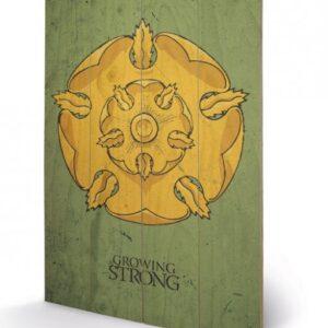 Posters Obraz na dřevě - Hra o Trůny - Game of Thrones - Tyrell