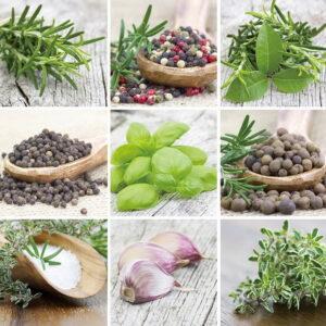 Posters Skleněný Obraz Zelené bylinky