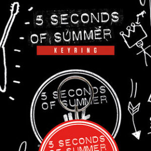 Posters Klíčenka 5 Seconds of Summer - Derping - Posters