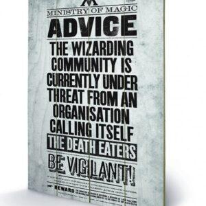 Posters Obraz na dřevě - Harry Potter - Be Vigilant