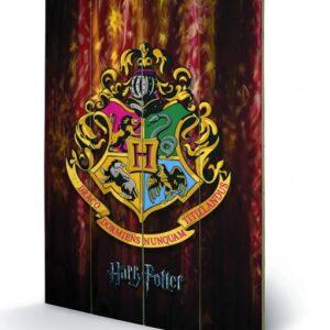 Posters Obraz na dřevě - Harry Potter - Bradavice