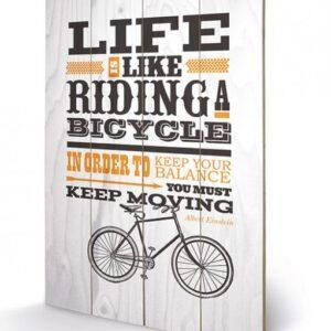 Posters Obraz na dřevě - Asintended - Riding A Bicycle