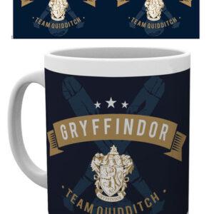 Posters Hrnek Harry Potter - Team Quidditch - Posters
