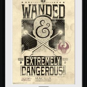 Posters Fantastická zvířata a kde je najít - Wanded rám s plexisklem - Posters