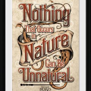 Posters Fantastická zvířata a kde je najít - Nature rám s plexisklem - Posters