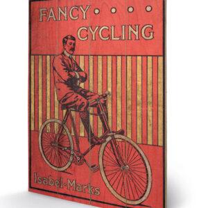 Posters Obraz na dřevě - Fancy Cycling