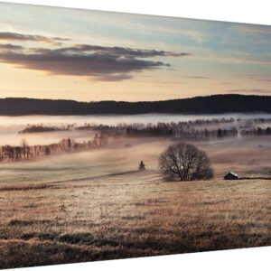 Posters Obraz na plátně Andreas Stridsberg - Misty Morning