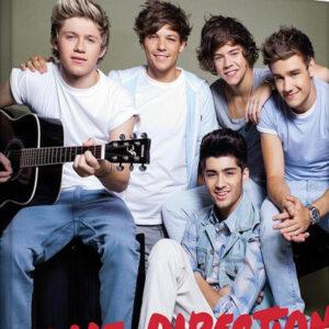 Posters Obraz na plátně One Direction - guitar