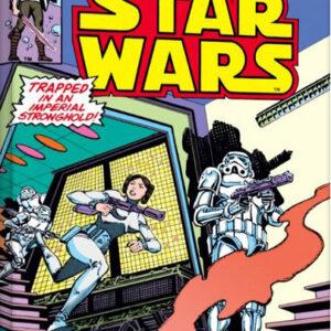 Posters Obraz na plátně Star Wars - A Princess Alone
