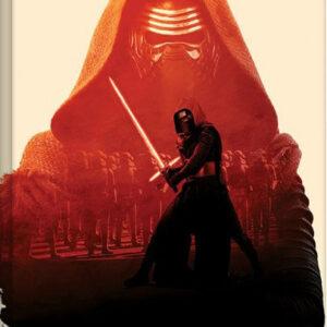 Posters Obraz na plátně Star Wars VII: Síla se probouzí - Kylo Ren Tri