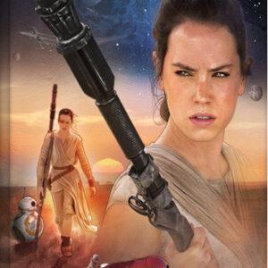 Posters Obraz na plátně Star Wars VII: Síla se probouzí - Rey Art