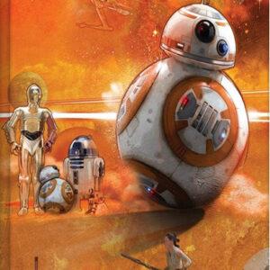 Posters Obraz na plátně Star Wars VII: Síla se probouzí - BB-8 Art