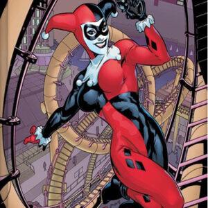 Posters Obraz na plátně Harley Quinn - Rollercoaster