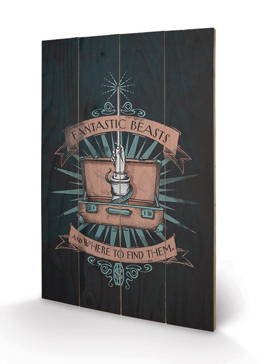Posters Obraz na dřevě - Fantastická zvířata a kde je najít - Magical Case