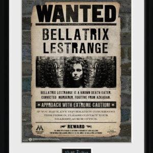Posters Harry Potter - Bellatrix rám s plexisklem - Posters