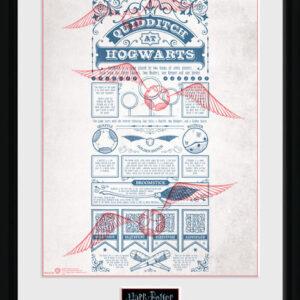 Posters Harry Potter - Quidditch at Hogwarts rám s plexisklem - Posters