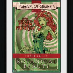 Posters Batman Comic - Circus Poison Ivy rám s plexisklem - Posters
