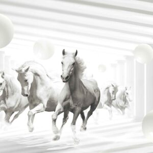 Posters Fototapeta Horses White Spheres 254x184 cm - 115g/m2 Paper - Posters