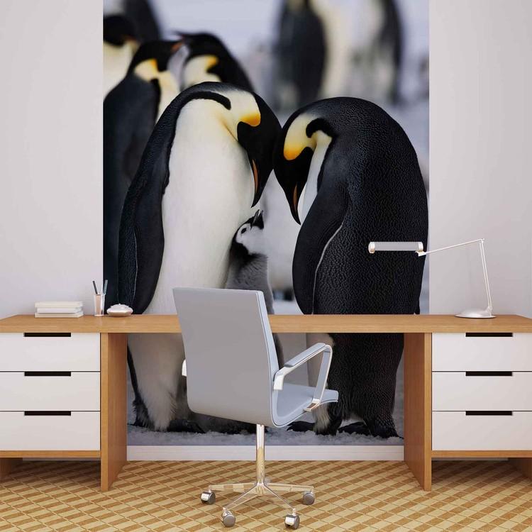 Posters Fototapeta Animals Penguin 206x275 cm - 130g/m2 Vlies Non-Woven - Posters