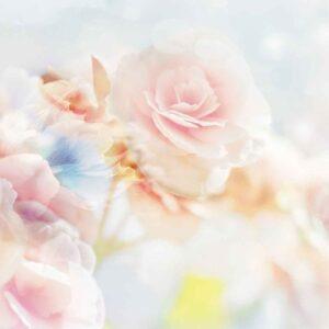 Posters Fototapeta Flowers Pastel Colours 254x184 cm - 115g/m2 Paper - Posters