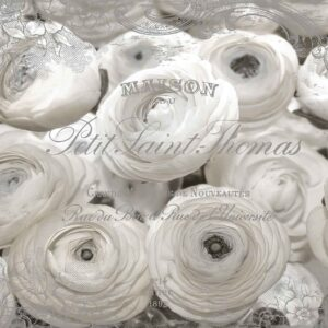 Posters Fototapeta White Roses Vintage Effect 206x275 cm - 130g/m2 Vlies Non-Woven - Posters