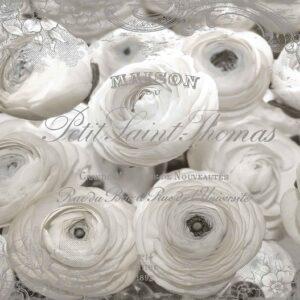 Posters Fototapeta White Roses Vintage Effect 206x275 cm - 130g/m2 Vlies Non-Woven - Posters