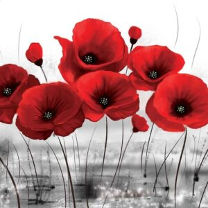 Posters Fototapeta Flowers Poppies Nature 254x184 cm - 115g/m2 Paper - Posters