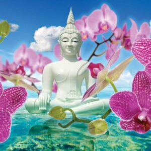 Posters Fototapeta Zen Flowers Orchids Buddha Water Sky 254x184 cm - 115g/m2 Paper - Posters