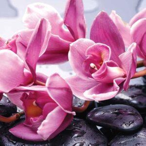 Posters Fototapeta Flowers Orchids Stones Zen 104x70.5 cm - 130g/m2 Vlies Non-Woven - Posters