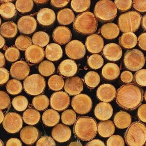 Posters Fototapeta Wood Texture Logs Nature 104x70.5 cm - 130g/m2 Vlies Non-Woven - Posters