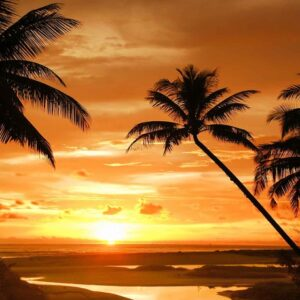 Posters Fototapeta Beach Tropical Sunset Palms 152.5x104 cm - 130g/m2 Vlies Non-Woven - Posters