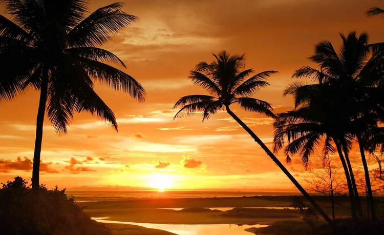 Posters Fototapeta Beach Tropical Sunset Palms 152.5x104 cm - 130g/m2 Vlies Non-Woven - Posters