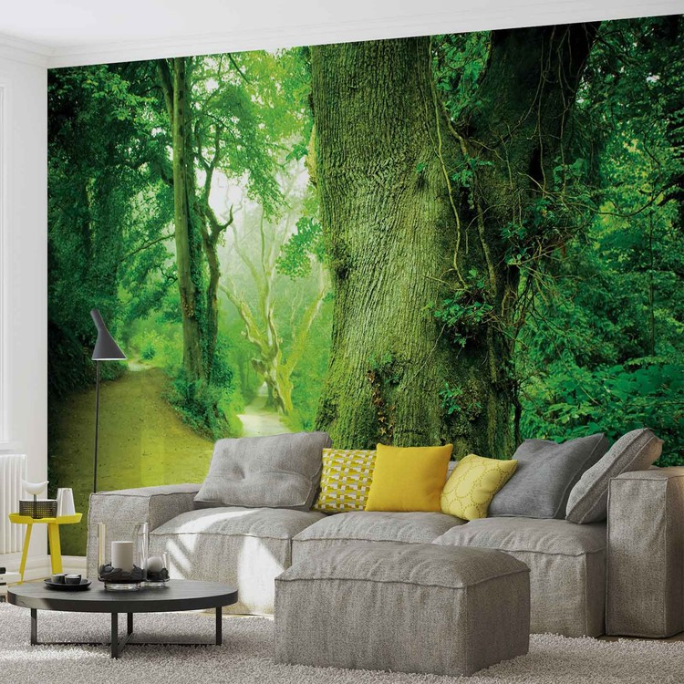 Posters Fototapeta Forest Nature Trees 152.5x104 cm - 130g/m2 Vlies Non-Woven - Posters