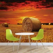 Posters Fototapeta Field Gold Pasture Yield Nature 208x146 cm - 130g/m2 Vlies Non-Woven - Posters