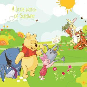 Posters Fototapeta Disney Winnie Pooh Eeyore Piglet Tigger 254x184 cm - 115g/m2 Paper - Posters