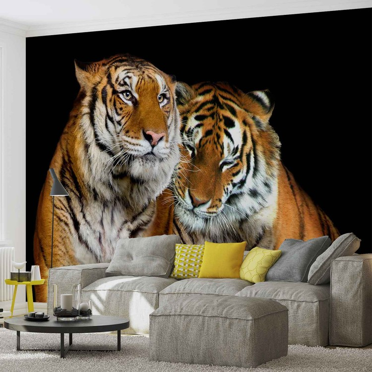 Posters Fototapeta Tigers 250x104 cm - 130g/m2 Vlies Non-Woven - Posters