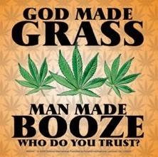 Posters Samolepka GOD MADE GRASS - Posters