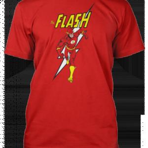 Flash-with-Flash-500x650